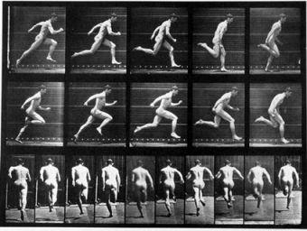 An example of Eadweard Muybridge\'s photographic motion studies