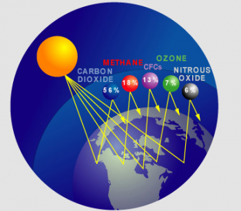 Causes of Global Warming