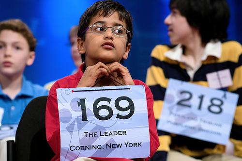The Spelling Bee, Model Minorities, and American