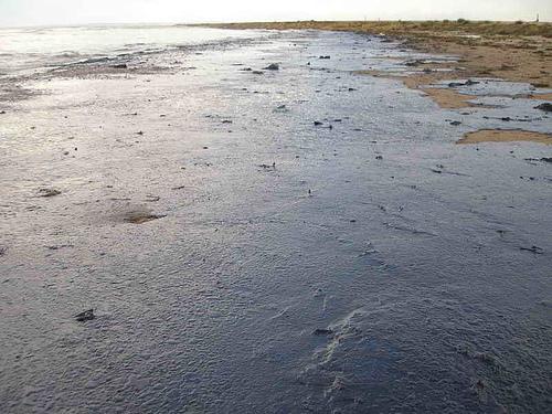 BP Gulf Oil Spill 2010