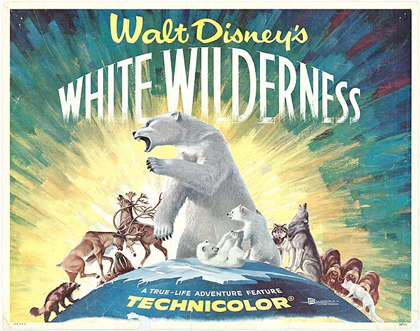 white-wilderness
