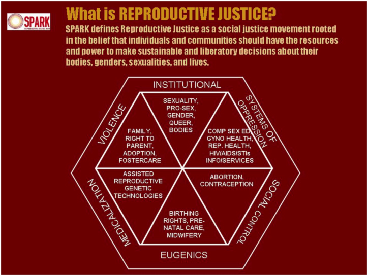 SPARK's diagram of reproductive justice