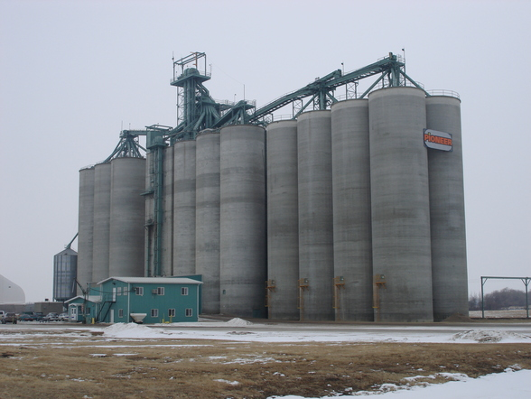 High through-put grain silo