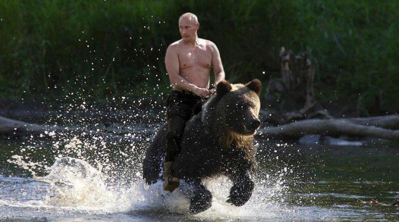Vladimir Putin Rides a Bear