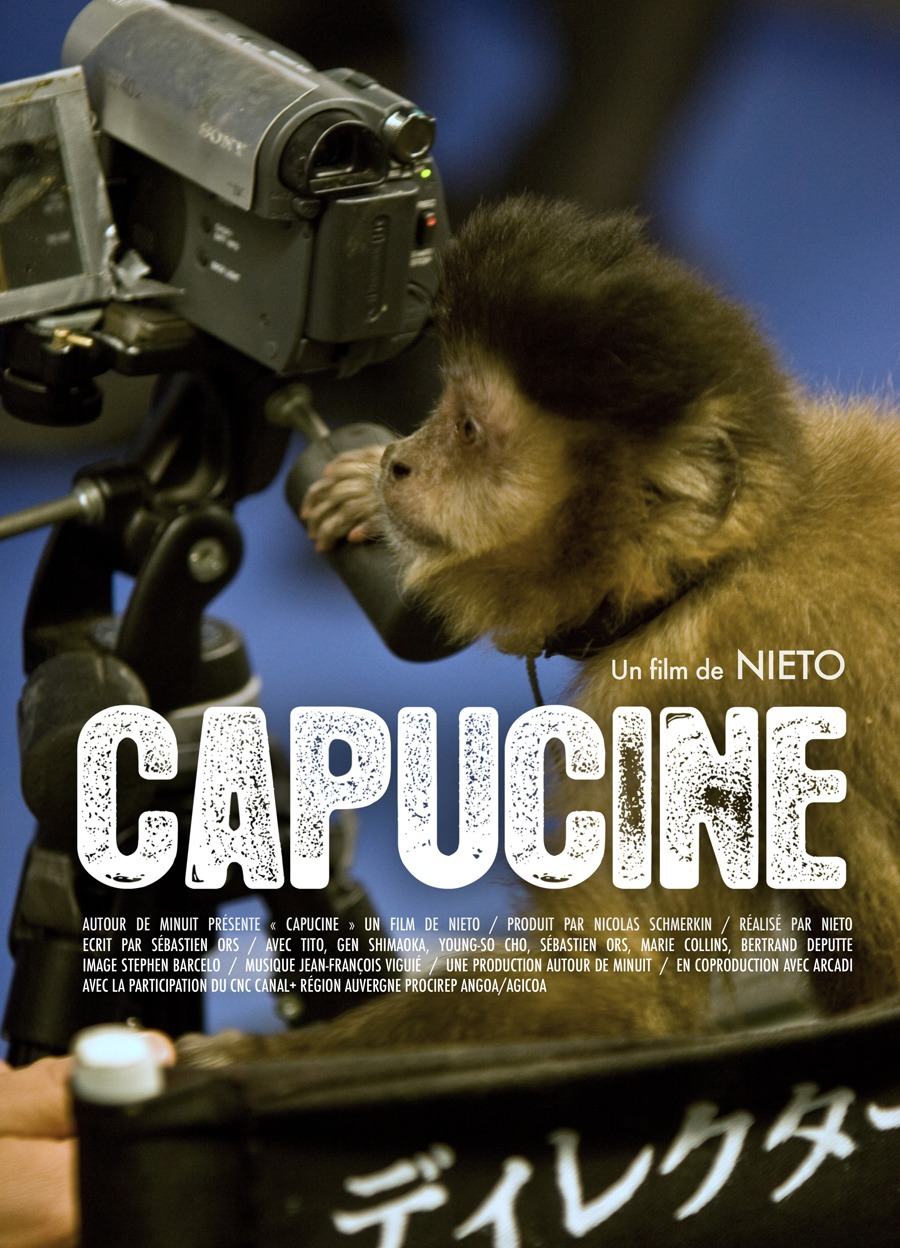 A capuchin monkey directing its first movie